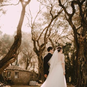 A Chic Fall Wedding into an Ancient Corfiot Olive Grove